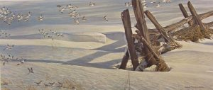 bateman-split-rails-snow-buntings